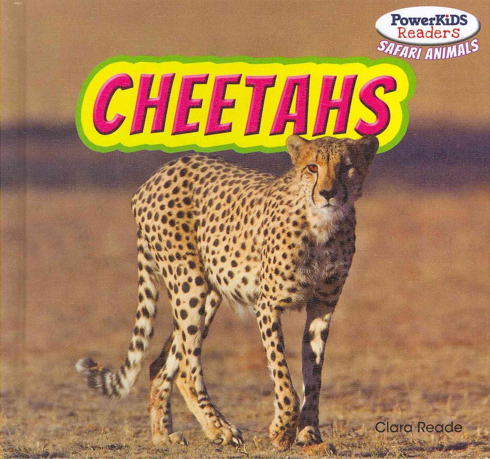 Cheetahs By Reade, Clara